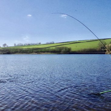 Using the wind as a friend, a guide to bank fishing at Wimbleball